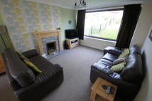 3 bedroom semi detached house in **MODERN KITCHEN & LARGE...