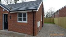 Bungalow to rent in Merlin Grove, Leyland...