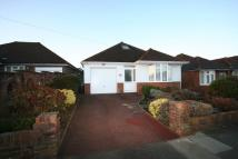3 bed Detached Bungalow to rent in Green Ridge, Withdean...