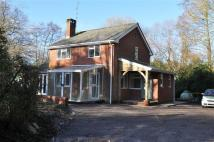 3 bed Detached house to rent in MInstead