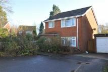 Fir Detached property for sale