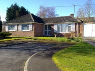 Detached Bungalow to rent in Glevum Close, Purton