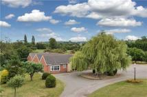 Equestrian Facility property in Brickyard Lane...
