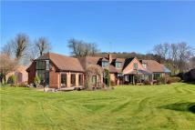 Detached home for sale in Hall Lane, Papplewick...