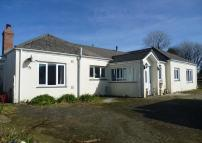 property for sale in Conveniently Located 14.7 acre Smallholding at Horsedowns, Praze, TR14