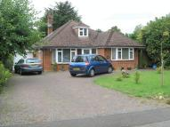 Detached Bungalow for sale in Banstead