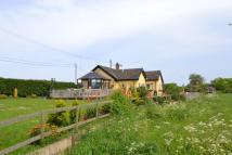 Detached Bungalow for sale in Hempstead Road...