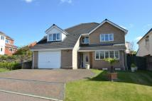 Detached property in Mustards Gapp, Haverhill