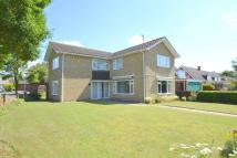 4 bed Detached property for sale in Blenheim Close, Haverhill