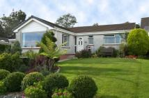 Detached Bungalow for sale in 48 TENDERAH ROAD, TR13