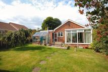 3 bed Detached Bungalow in Shackleton Close, Whitby...