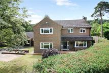 4 bed Detached house in Pannells, Lower Bourne...