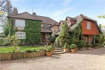 Detached home for sale in Green Lane, Churt...