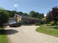 3 bed Bungalow for sale in The Street, Dockenfield...