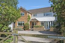 Detached property for sale in Lavender Lane, Rowledge...