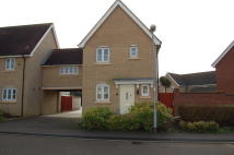 Link Detached House to rent in Clare Drive, Caldecote...