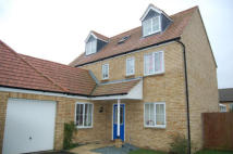 Detached house to rent in Shearling Drive...