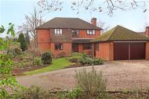 4 bedroom Detached house in Lower Ham Lane, Elstead...