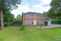 4 bed Detached house in Gasden Copse, Witley...