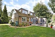 Bungalow for sale in Wood Lane, South Heath...