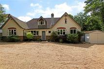 5 bedroom Detached property in Grove Road, Guildford...