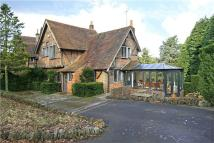 3 bed semi detached house for sale in Churt Road, Hindhead...