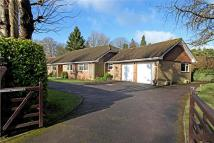 4 bedroom Bungalow for sale in Derby Road, Haslemere...