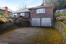 Detached Bungalow for sale in Hill Road, Haslemere...