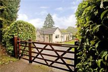 Bungalow for sale in Vicarage Lane, Haslemere...
