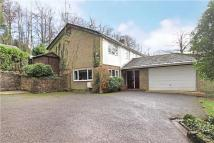 4 bed Detached home for sale in The Avenue, Haslemere...