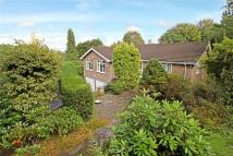3 bed Detached house in Petworth Road, Haslemere...