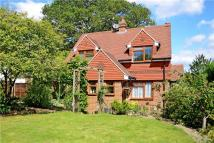 Detached home for sale in Petworth Road, Haslemere...