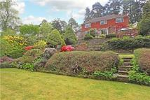 4 bed Detached house for sale in Marley Lane, Haslemere...