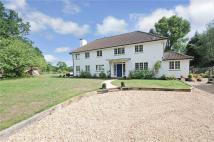 6 bedroom Detached property in Danley Lane, Lynchmere...