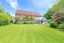 Detached home for sale in Midhurst Road, Haslemere...