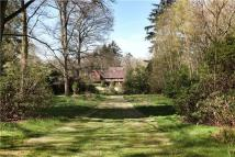 7 bedroom house for sale in Lynchmere, Liphook...
