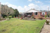 Bungalow in Forest Road, Whitehill...
