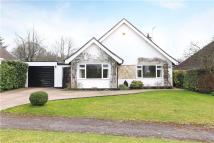 Detached house for sale in Chiltley Lane, Liphook...