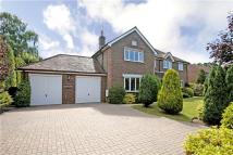6 bedroom Detached home in Mayflower Road...