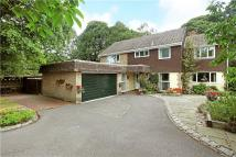 5 bed Detached house in Ash Grove, Liphook...