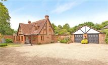 Golden Ball Lane Detached house for sale