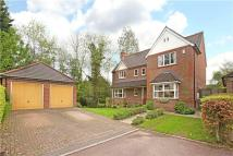 6 bed Detached property in Kelham Gardens...