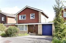 Terrington Hill Detached property for sale