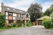 5 bed Detached home in Hollies Close, London...
