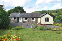 Bungalow for sale in Carno  POWYS