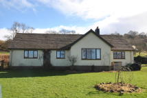 Crickhowell Bungalow for sale