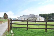 4 bedroom Detached Bungalow in Whitland CARMARTHENSHIRE