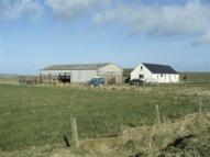 Bungalow in Stronsay ORKNEY ISLANDS