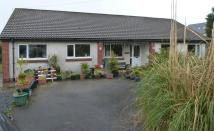 Penygroes Bungalow for sale