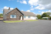 Whitland Detached house for sale